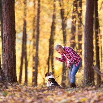 Active senior woman with dog on a walk in a beautiful autumn forest.
