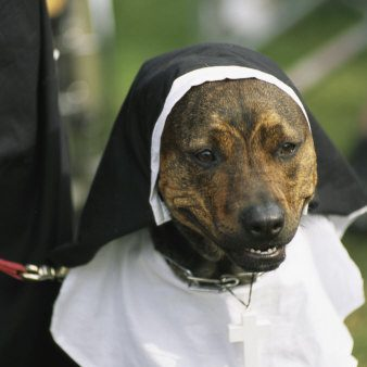 Sister Mary Francis - Kindness